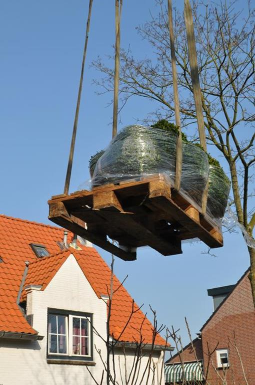 foto van Heemstede in Heemstede